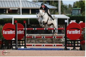 2016 Winter Equestrian Festival, Palm Beach: Photos © Sportfot