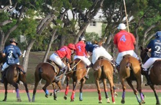 Polo season is upon us