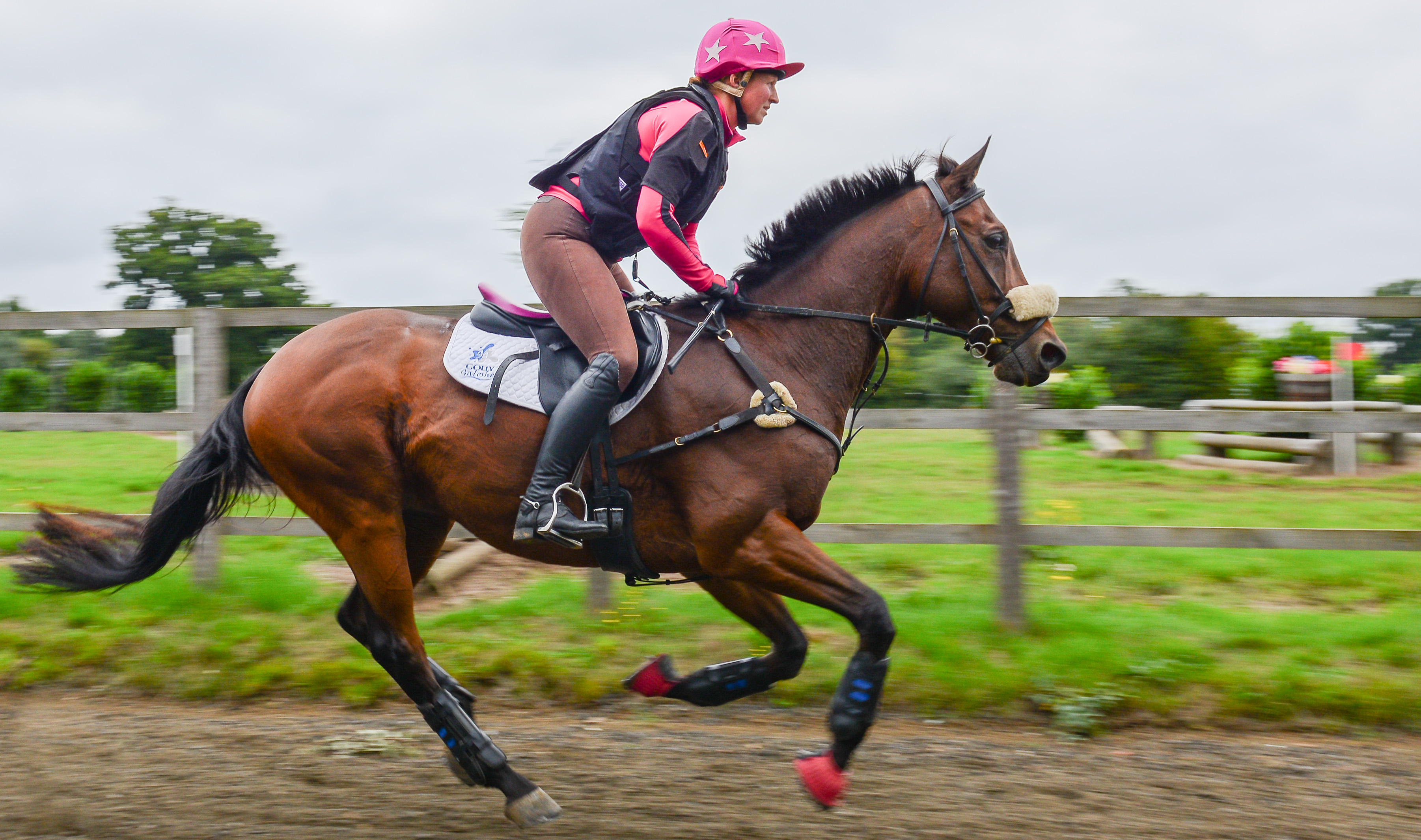 Performance Improvement Victoria Bax. Photo by Thoroughbred Sports Photography