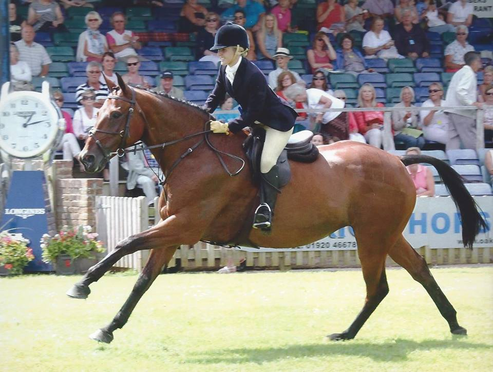 Vicky Mitson Amp Royal Gent Win A Third Hoys Qualifier