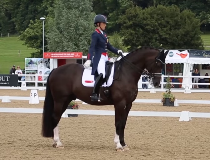 Charlotte dujardin sets the expectation for rio at for Dujardin services