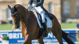 Bettina Hoy and Seigneur Medicott. Image credit Adam Fanthorpe/Blenheim Palace International Horse Trials