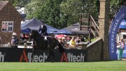 Alltech are Supporting the Showing Classes at Hickstead for a Third Year in 2017