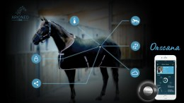 Orscana MONITORING AND TRACKING HOLISTIC WELLBEING OF EACH HORSE