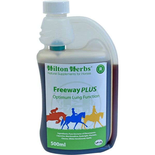 NEW Freeway PLUS from Hilton Herbs
