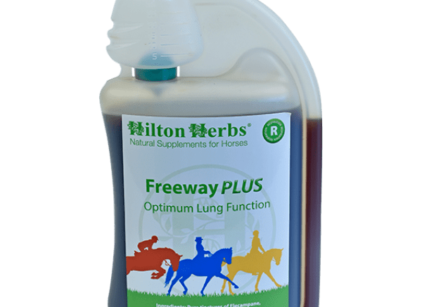 FREEWAY PLUS from Hilton Herbs