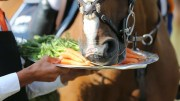 Bintang II - Laura Renwick and Bing, helping himself to a carrot during a prize giving.