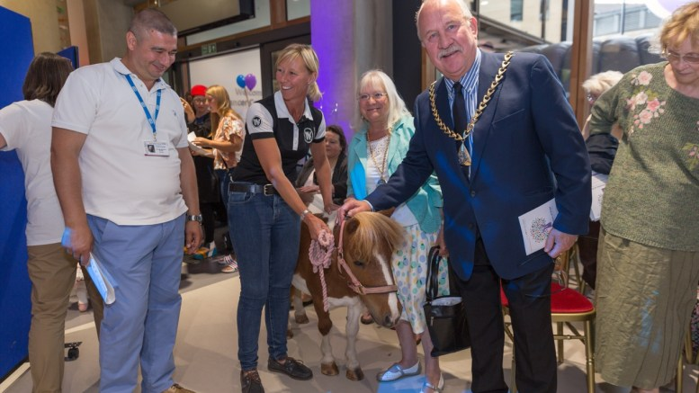 Blue cross Shetland ponies - Suzanne Halsey, Equilibrium, with Princess Rose and the Mayor of Southwark, Councillor Charlie Smith