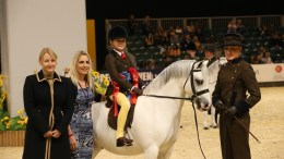 Horse of the Year Show - Colne M&M Lead Rein Pony of the Year