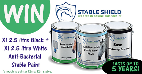 WIN Anti-Bacterial Stable Paint