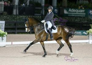 Ashley Holzer and the 11-year-old Havanna 145 en route to AGDF Grand Prix victory — and a new personal best score of 72.826%.