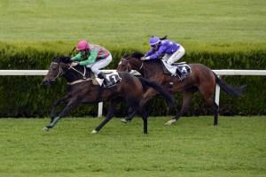 2020 Cheltenham Gold Cup predictions horse racing