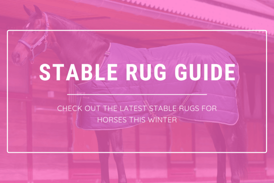 best stable rugs winter 2020