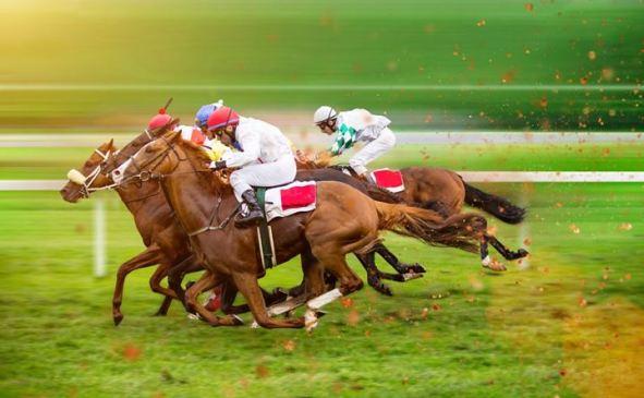Cheltenham horse and jockey pairings