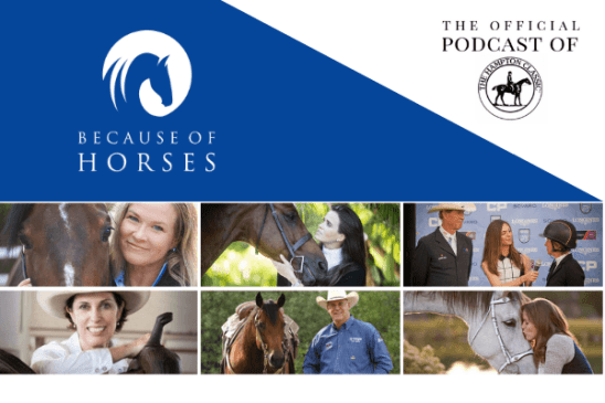 American Horse Publications 2019 winner Because of horses