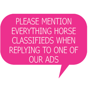 Classifieds | Everything Horse
