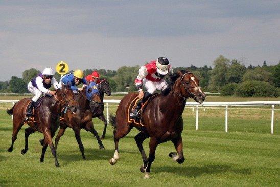 Horse Racing Coronavirus Pandemic