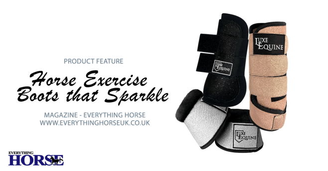 Horse Exercise Boots Luxe Equine feature image