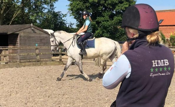 Points to Consider when Buying a New Horse