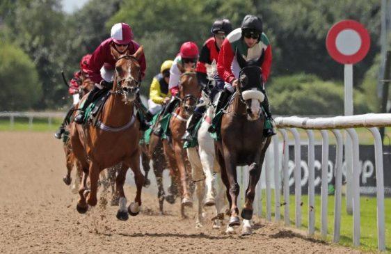 Arabians racing at Wolverhampton 2019 (C) Debbie Burt