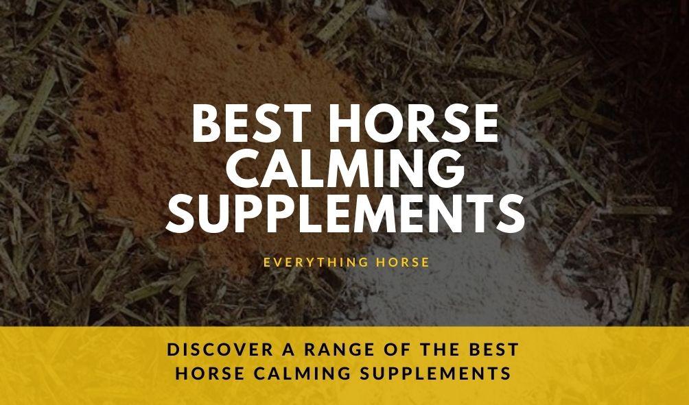 Best Horse Calming Supplements-2