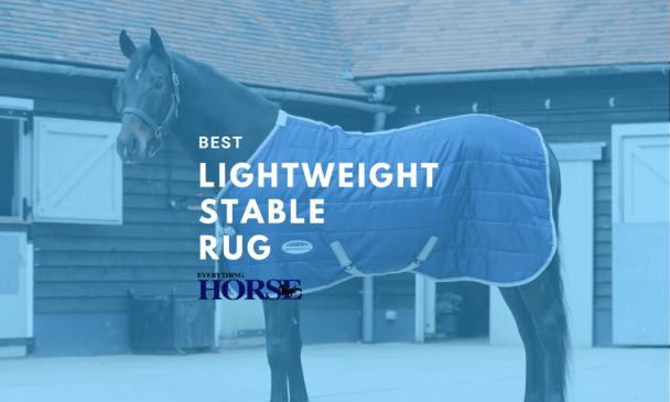 best lightweight stable rug