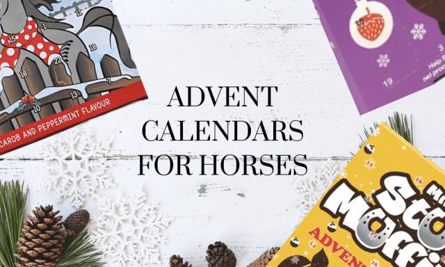 Advent calendars for horses
