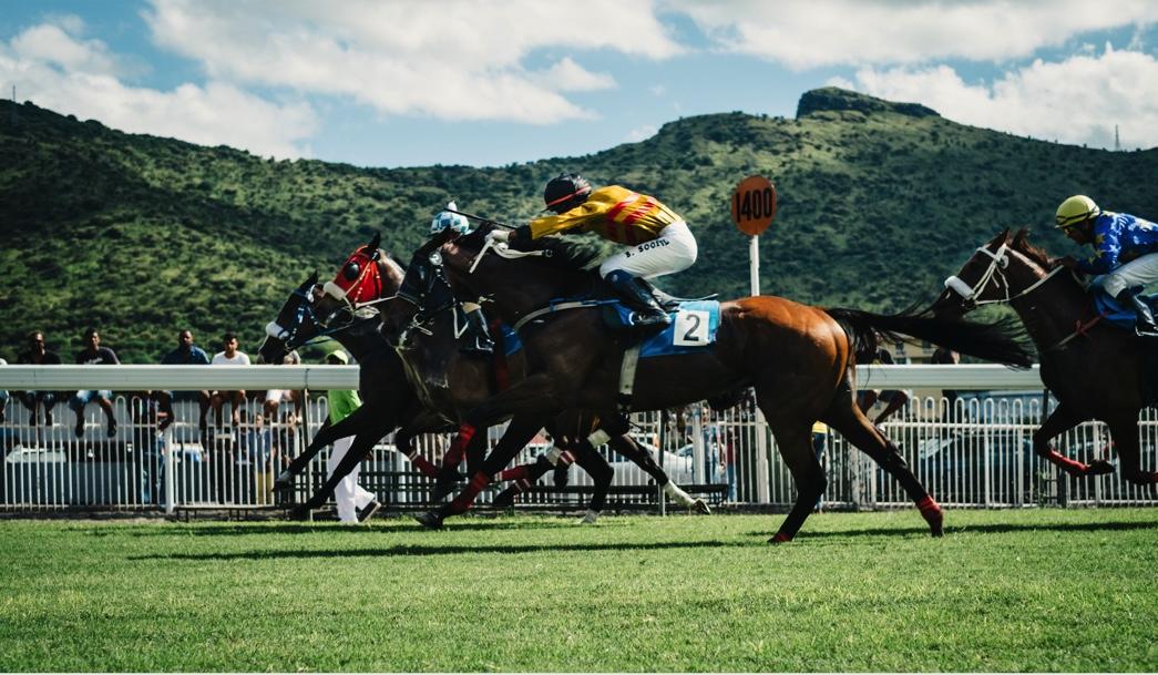Rachael Blackmore's path to racing glory