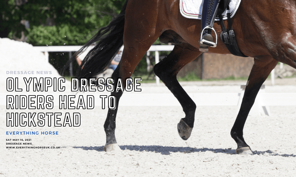 olympic dressage riders head to hick stead