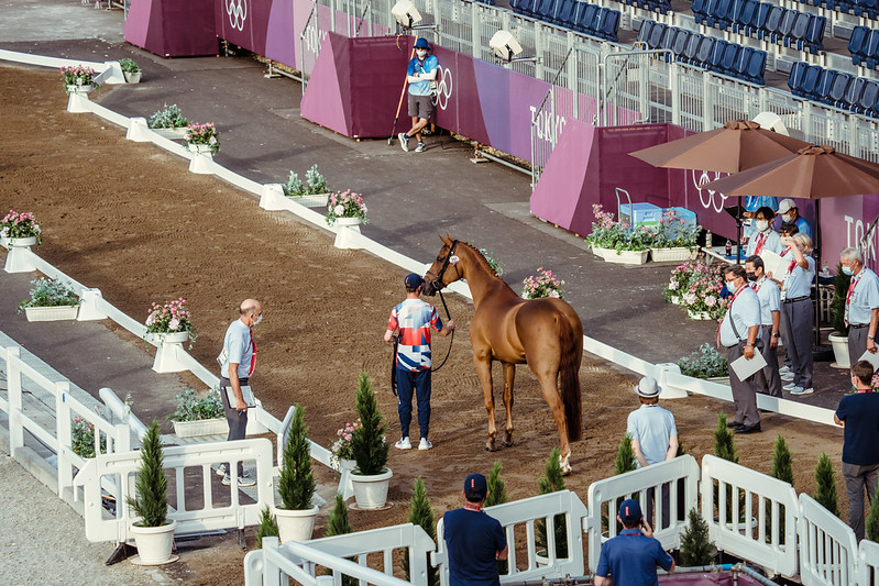 Olympics Games - FEI 2nd horse inspection Jumping 341 - GBR - Maher Ben ride Explosion W Photo Copyright © FEI/Christophe Taniére