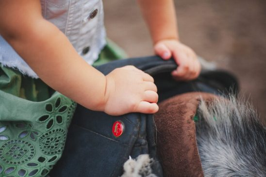 Two-year-old girl dies at Bedale Hunt Meet