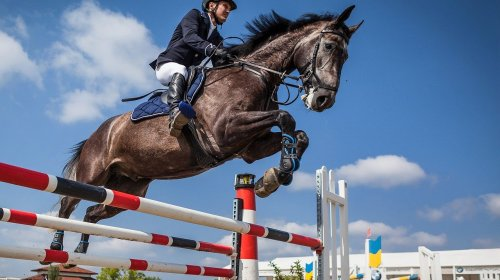 How to manage equestrian event nerves