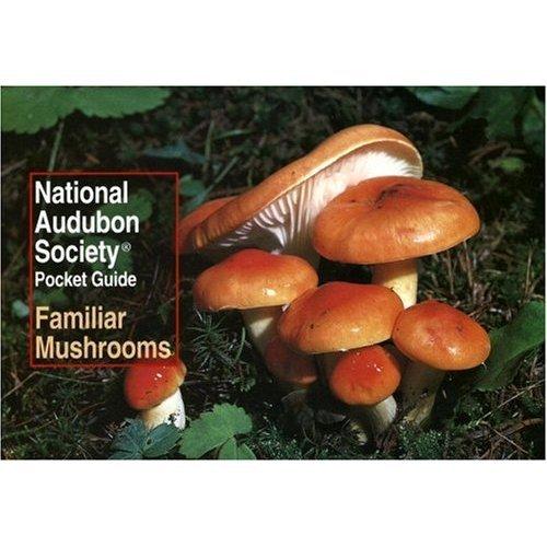 National Audubon Society Pocket Guide, Familiar Mushrooms