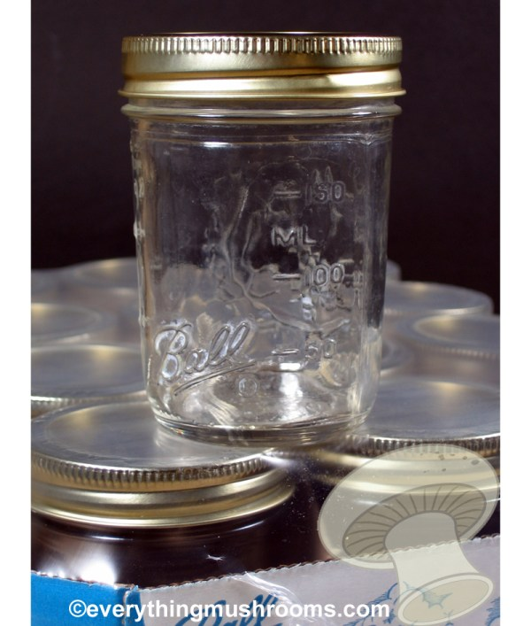 Jar, Pint 16oz Wide Mouth Ball Brand - one dozen w/lids and bands