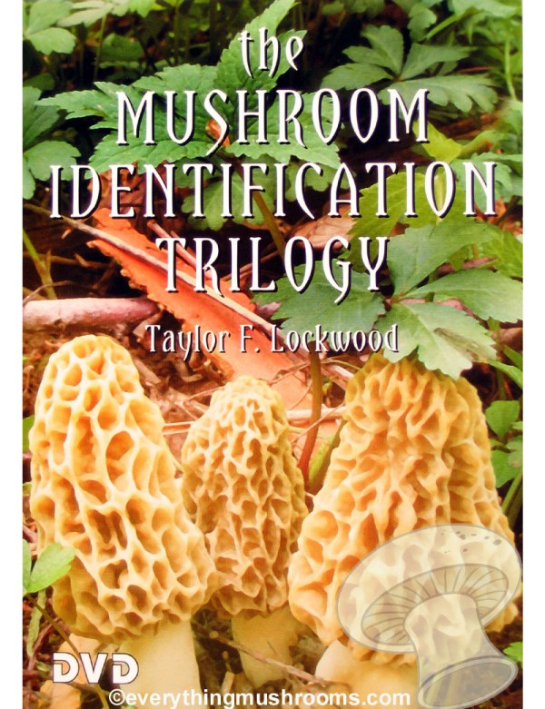 The Mushroom Identification Trilogy DVD by Taylor F. Lockwood