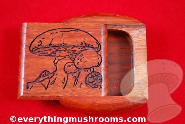 Mushroom Secret Box - Medium, by Heartwood Creations