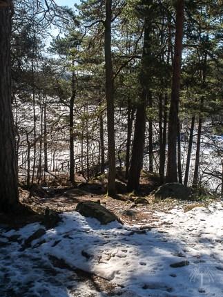 Stockholm Nacka Nature Reserve Mar 2017-15