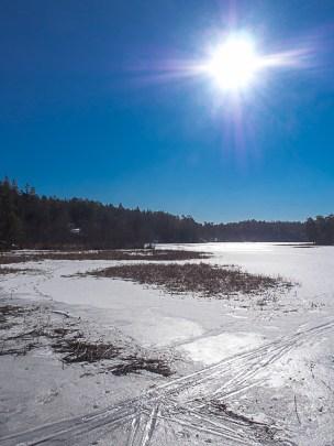 Stockholm Nacka Nature Reserve Mar 2017-16