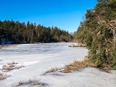Stockholm Nacka Nature Reserve Mar 2017-17