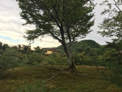 Kinkaku-Ji Berge - Kyoto