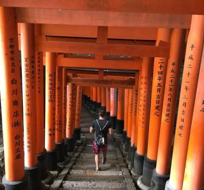 Fushimi-Inari, abwärts, Kyoto