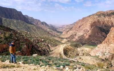 Wadi Dana Panorama