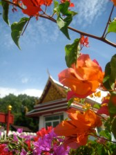 Temples and flowers: two things Thailand has in innumerable quantity.