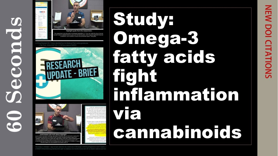 Study: Omega-3 fatty acids fight inflammation via cannabinoids