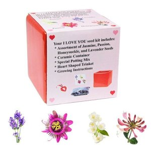 Blooming Flower Seed Kit - I LOVE YOU COLLECTION