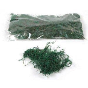 Decorative Bonsai Moss