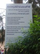 Info Madaba, vinneve