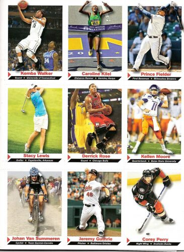 Спортивные картины. Зимние и летние виды спорта (картинки ...