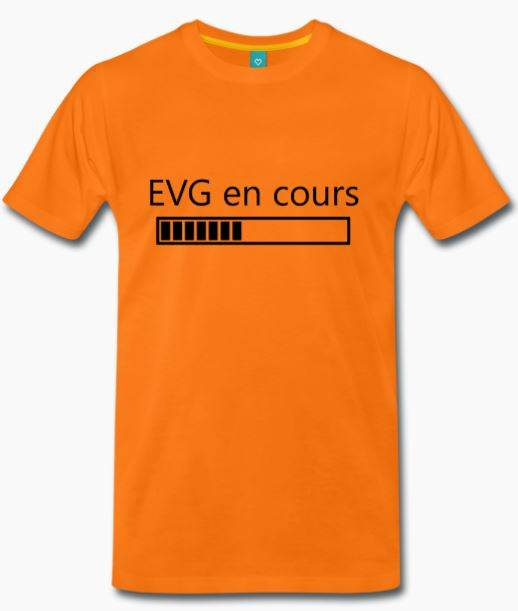 T-Shirt orange EVG en cours