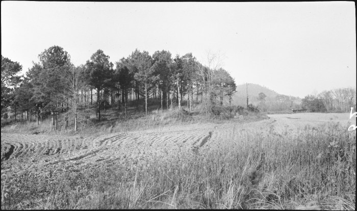 "Figure 6. 1917 Photograph of Mound B (Anonymous 1917). Original caption reads: ""Indian Mound on Leake Property, 4 Mi. S.W. of Cartersville""."